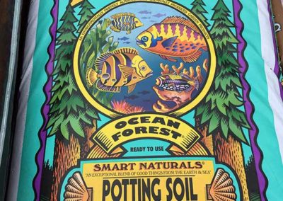 fox-potting-soil