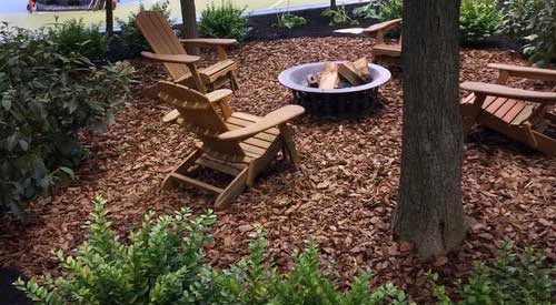 Fire Pit with Bark